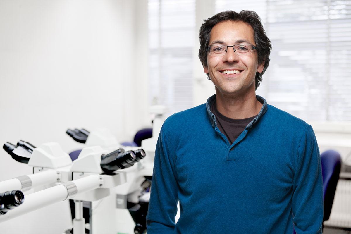 Llorenç Grau Roma, PhD, Dipl. ECVP
